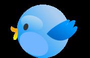 tweet_birs-2