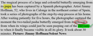 text for photographs