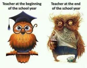 teacher beginning and end