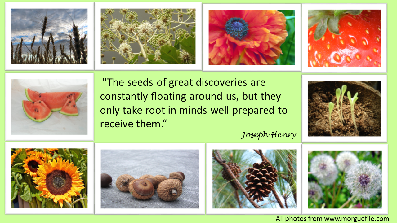 Joseph Henry - seeds of discovery