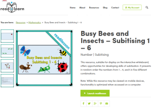 Busy Bees and Insects subitising