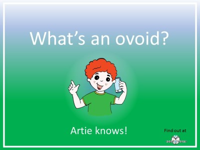 what's an ovoid