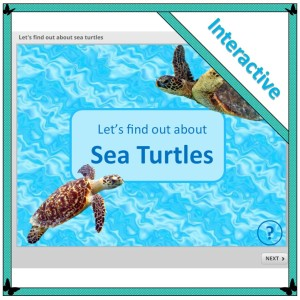 Let's find out abut sea turtles is an interactive digital non-fiction texts about sea turtles, for children in their first three years of school