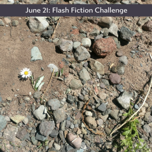 All is not lost Carrot Ranch flash fiction challenge