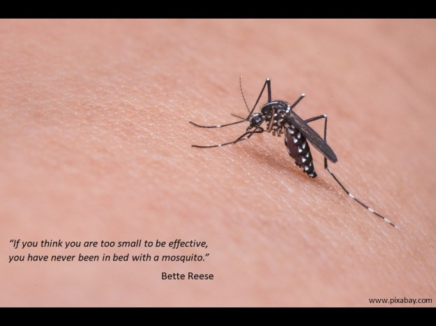 quote about effectiveness and size by Bette Reese