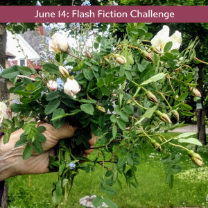 Carrot Ranch flash fiction challenge - write about a bouquet
