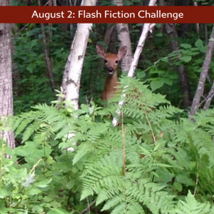Peering from the woods, Charli Mills flash fiction Carrot Ranch
