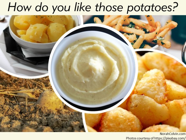 a selection of potato dishes