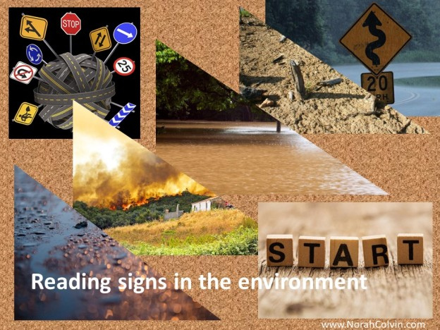 teaching children to read signs in the environment