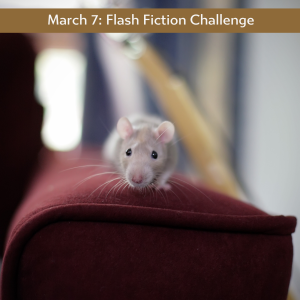 Carrot Ranch flash fiction challenge - mouse