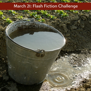 Charli's flash fiction challenge a bucket of water