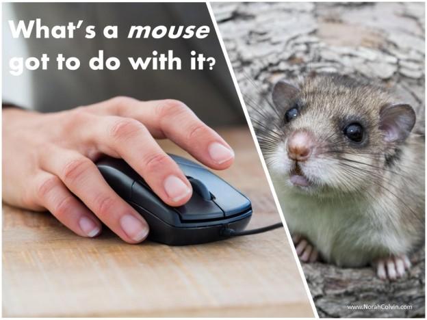 a flash fiction story about a mouse