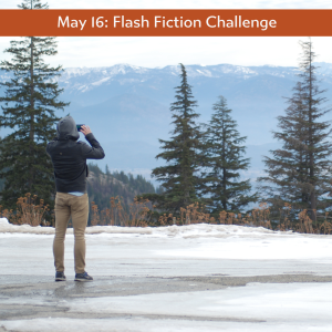 Carrot Ranch flash fiction challenge - trees