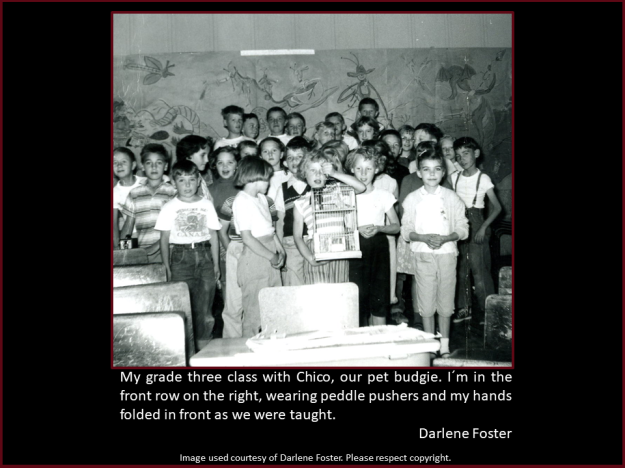Darlene Foster reminiscences of school days