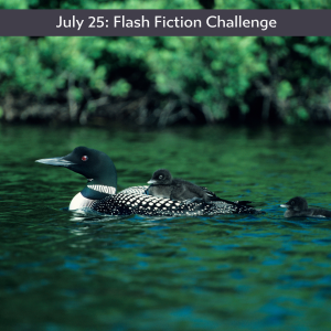 Carrot Ranch flash fiction challenge - for one day