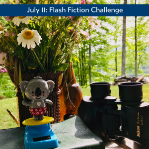 Carrot Ranch flash fiction challenge Koala