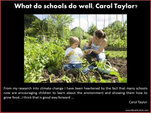 Carol Taylor on what schools do well