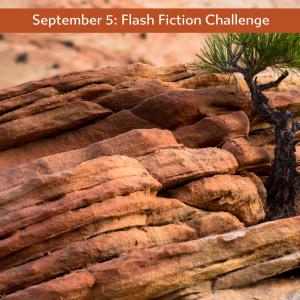 Carrot Ranch flash fiction challenge - true grit