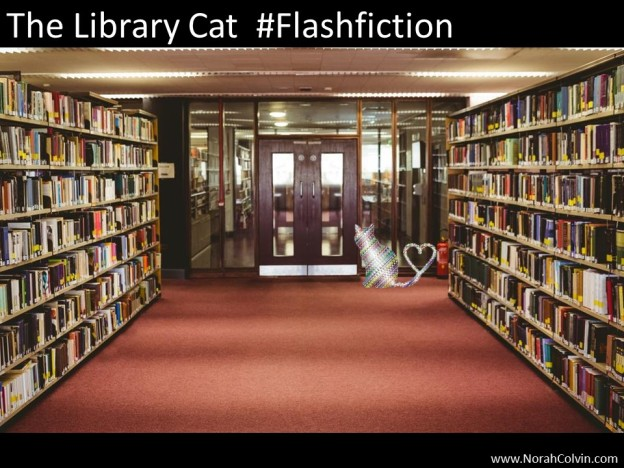 The Library Cat Flash fiction