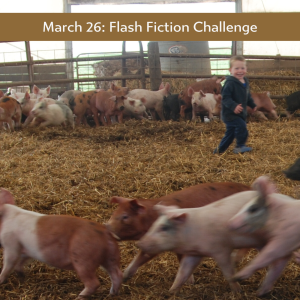 Carrot Ranch - in charge flash fiction