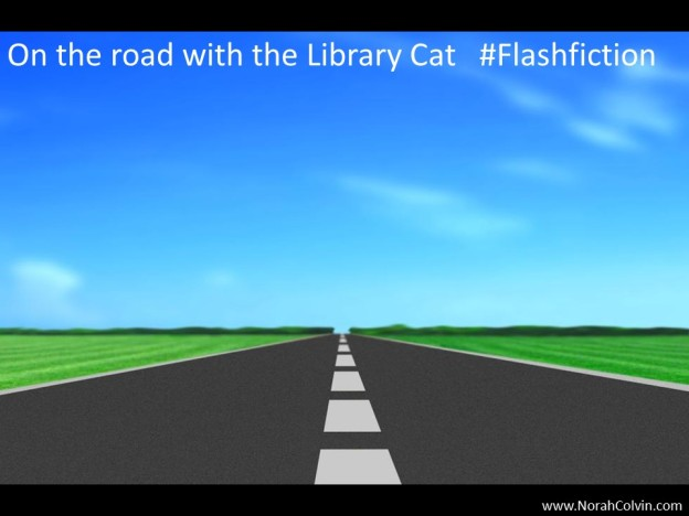 On the road with the library cat flashfiction