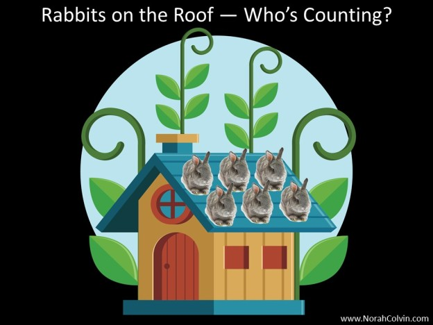 Rabbits on the Roof flash fiction