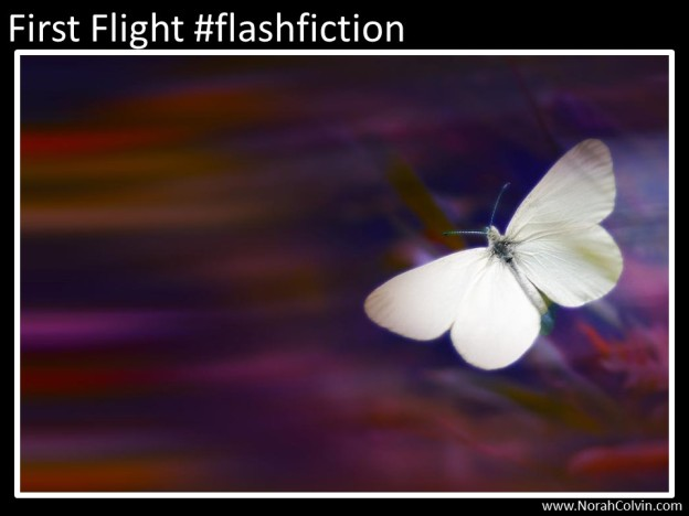 First flight #flash fiction