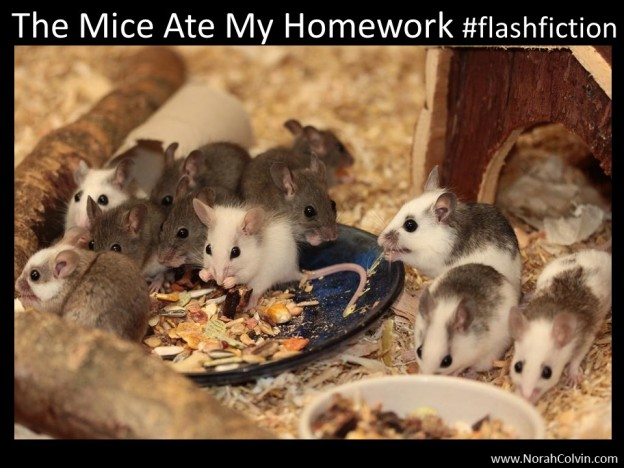#flash fiction The Mice Ate My Homework