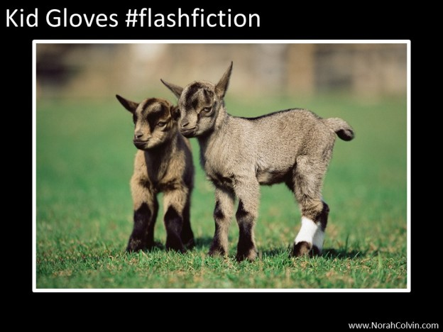 Kid Gloves flash fiction