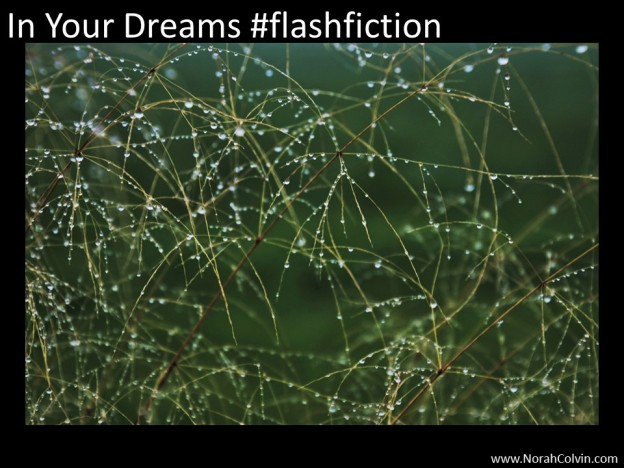 In your dreams #flash fiction