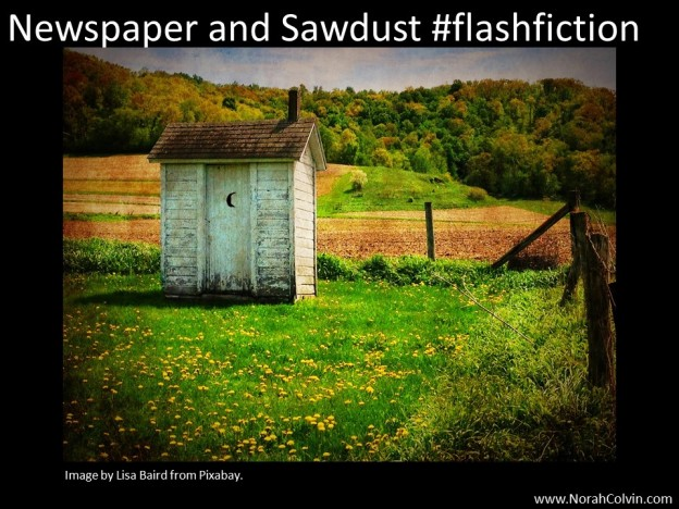 Newspaper and Sawdust