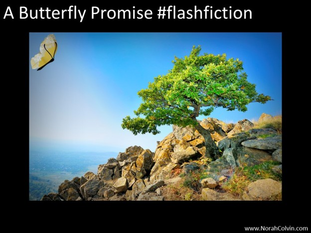A Butterfly Promise #flashfiction