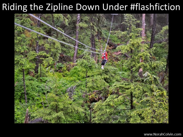 flash fiction Riding the Zipline Down Under